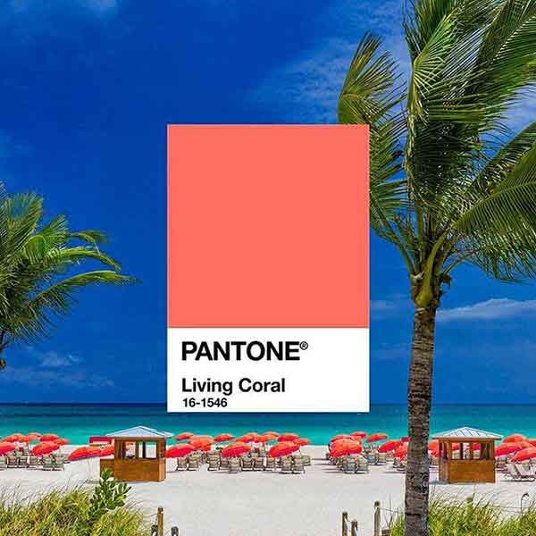 COR DO ANO PANTONE 2019 LIVING CORAL